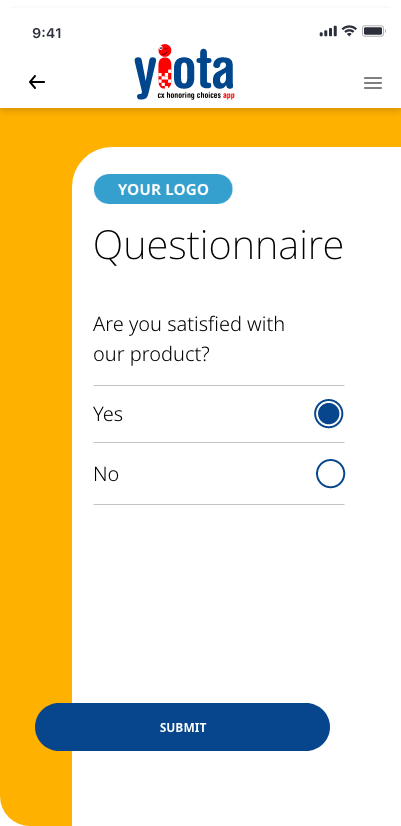Experience Questionnaire